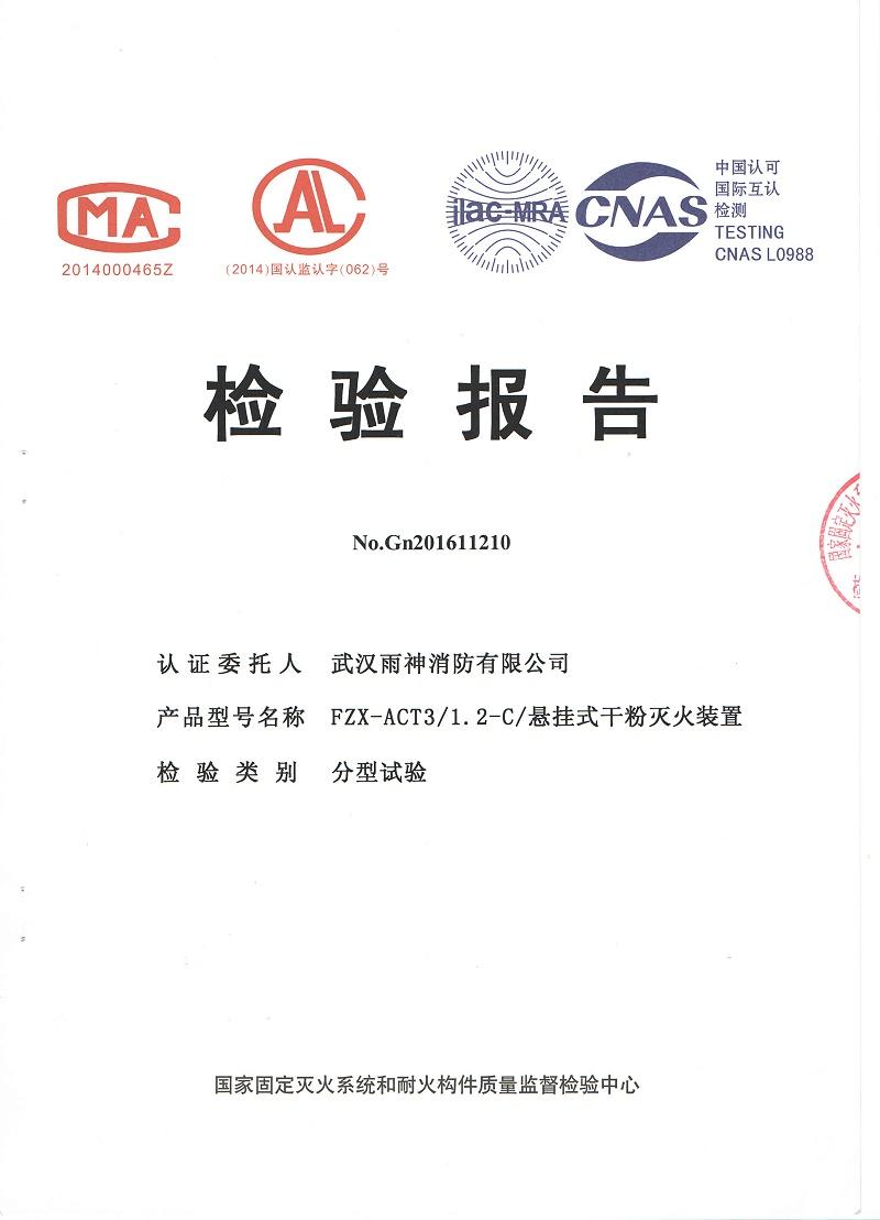 武汉雨神检测报告新版_页面_1